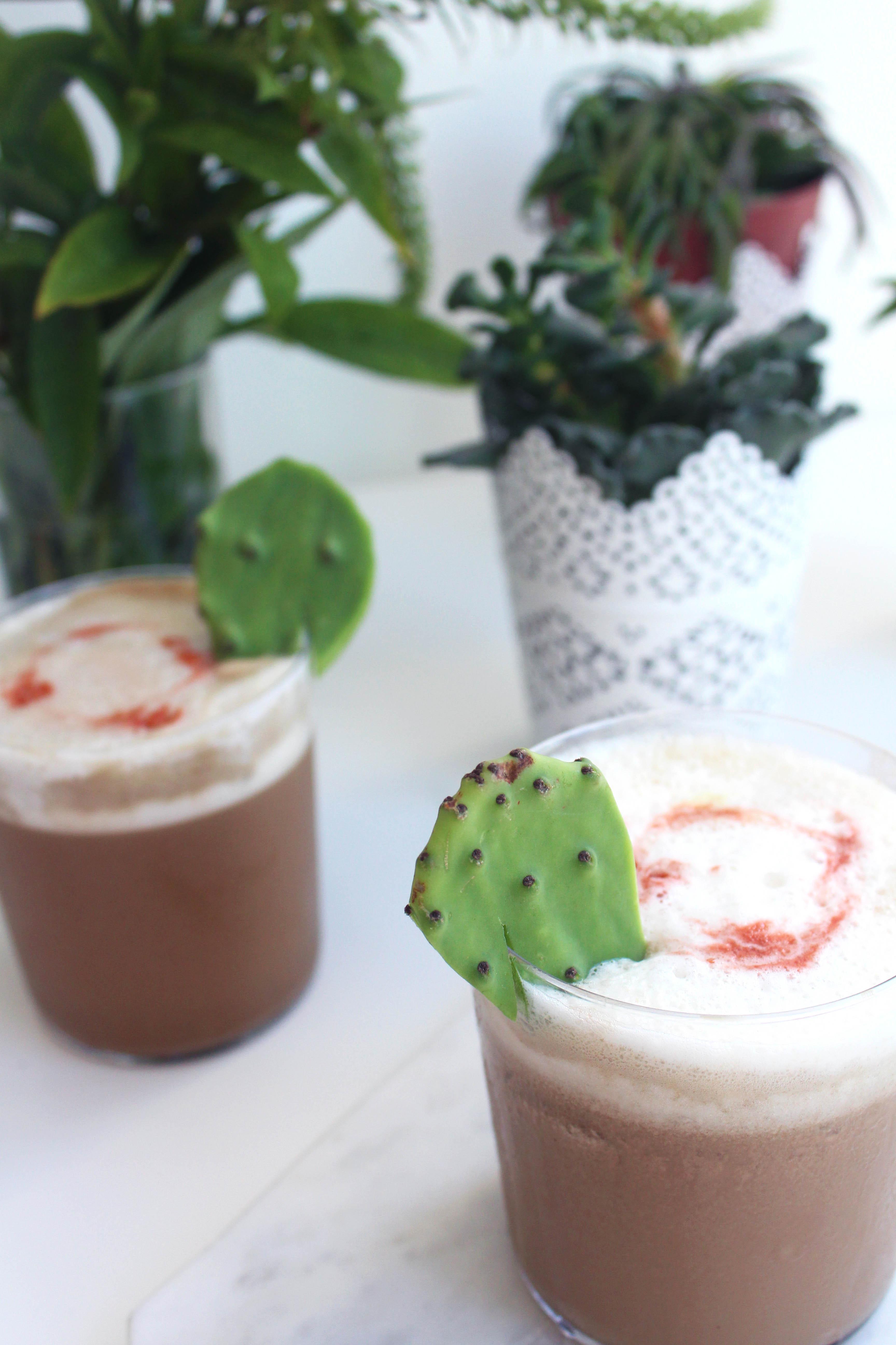 Cactus Mole Bourbon Milkshake - Whiskey Muse